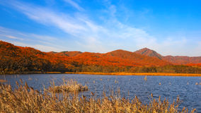 Lake in the evening. Lake in the autumn evening royalty free stock photo