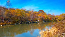 Lake in the evening. Lake in the autumn evening royalty free stock images