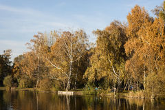 Lake at evening in autumn Royalty Free Stock Photos