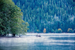 Lake at evening with fog Royalty Free Stock Photos