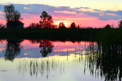 Lake in the evening Royalty Free Stock Image