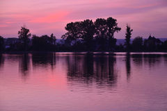 Lake. Evening lake sunset sky and trees Royalty Free Stock Photography