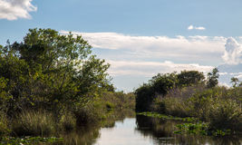 Lake in Everglades Safari Park Royalty Free Stock Photos