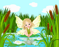 Lake Fairy Stock Photos
