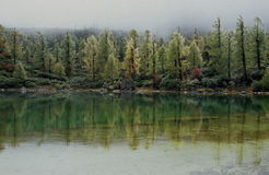 Lake in fairyland. Colorful trees around the clear and green lake, just like in fairyland Royalty Free Stock Images
