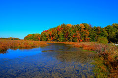 Lake in Fall Colors Stock Photos