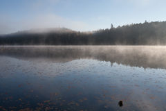 Lake in the fall forest, Canada. Lake in the fall forest Royalty Free Stock Photos