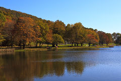 Lake in the Fall. Peaks of Otter Lake in Virginia royalty free stock photo