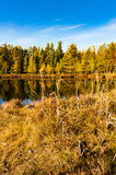 Lake in The Fall Stock Image