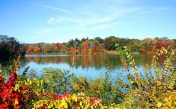A lake in the fall stock images