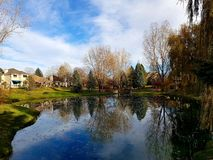 Neighborhood lake in fall royalty free stock images