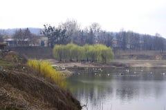 Lake&farm Stockbild