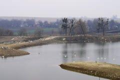 Lake&farm Stockfoto
