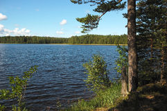 Lake in-field. royalty free stock photo