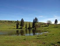 Lake at the field Stock Photo
