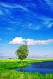 Lake on the field with beautyful sky Stock Photography