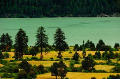 Lake and Field Royalty Free Stock Images