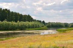 The lake among the fields stock photo