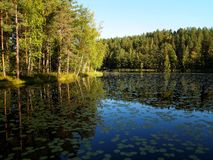 Lake in Finland Stock Images
