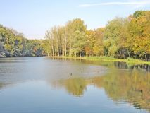 Autumn landscape by the lake royalty free stock image