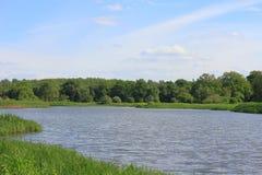 Lake in a floodplain Stock Photography