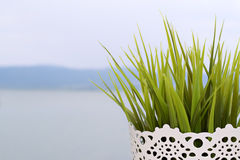 Lake and flowerpot Stock Images