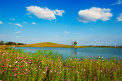 Lake and flowers Royalty Free Stock Photos
