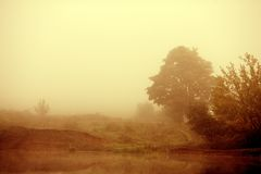 Lake in the Fog Stock Photos