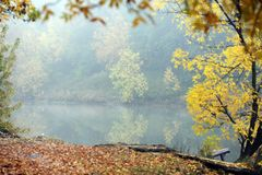 Lake in the Fog. Morning forest and lake in the mist in autumn Royalty Free Stock Photos