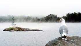 Lake in fog Stock Photo