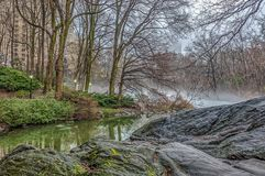 At the lake on foggy day royalty free stock photo