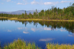 Lake in forest. Royalty Free Stock Photography