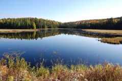 Lake and Forest. In park in Northern Ontario Royalty Free Stock Images