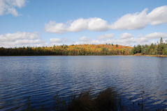 Lake and Forest. In park in Northern Ontario, with beautiful sky Royalty Free Stock Photo