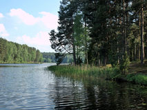 The lake in forest Royalty Free Stock Photos