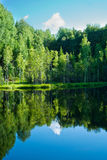 Lake in forest Royalty Free Stock Photo