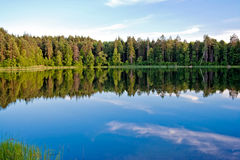 Lake and forest Stock Images