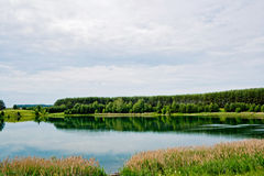 Lake and forest Royalty Free Stock Image