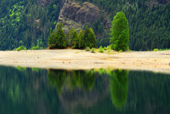 Lake and forest Royalty Free Stock Images
