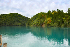 A lake in the forest Royalty Free Stock Images