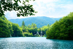 Lake in forest Stock Images