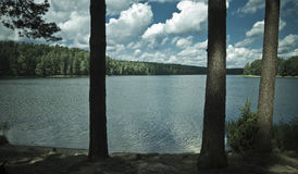 Lake in the forest Stock Photos