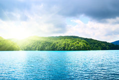 Lake in forest Royalty Free Stock Photos