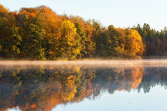Lake at the forest in autumn and fog Stock Photo