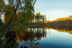 Lake in forest. Autumn royalty free stock photography