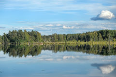 Lake and forest. stock photography