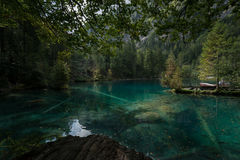 Lake in the forest. A big lake within the forest Stock Photography