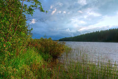 Lake and forest in cloudy day Stock Image