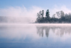 Lake Seliger: forest fog. Morning summer nature misty foggy scene: forest with trees surrounded by fog (mist) and reflected on the water surface (lake, river Royalty Free Stock Photography