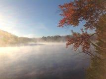 Lake Forest Fog Autumn Stock Photography